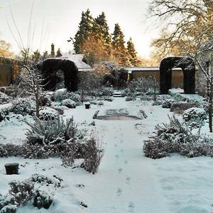 zahrada-v-zime
